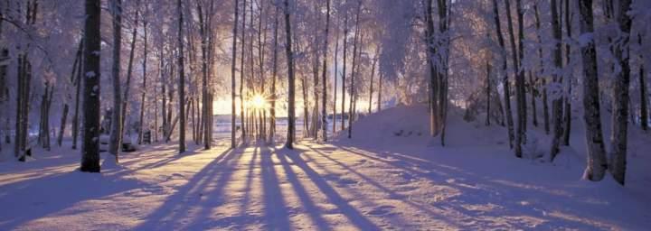 sunglasses in winter
